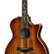 【テイラースウィフトがメインで使ってるギターはコレ!】